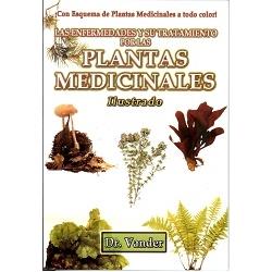 LAS PLANTAS MEDICINALES CON ESQUEMA DE PLANTA